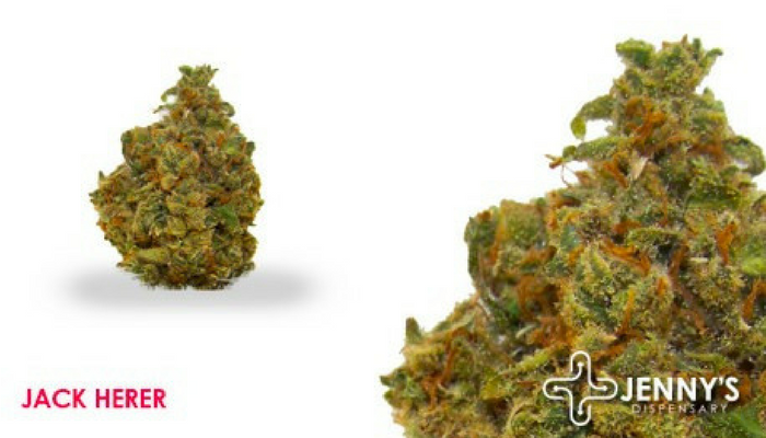 Most Popular Strains in Las Vegas